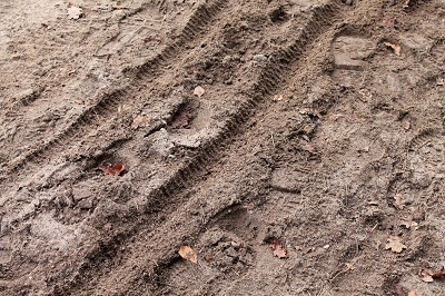 Footprints through mud and dirt.